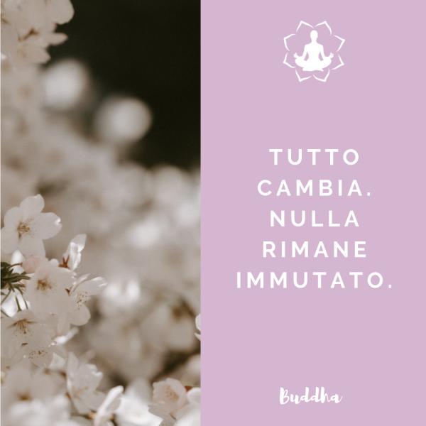 citazione buddha tutto cambia