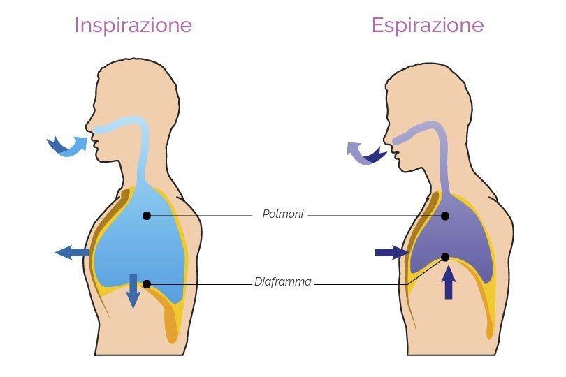 processo respirazione