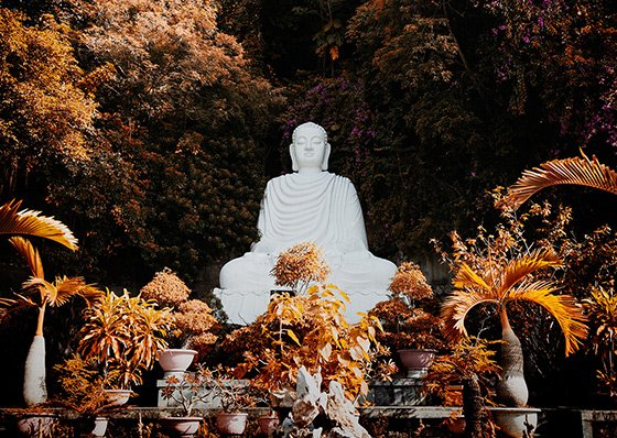 dharma nel buddhismo