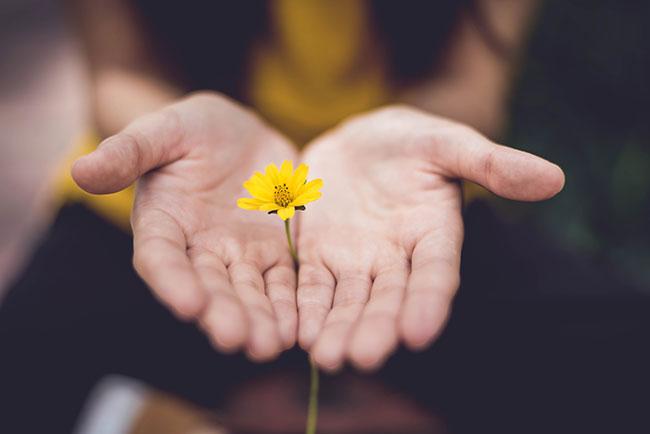 fiore e rispetto per la natura